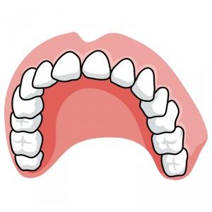 Съемное протезирование зубов без обточки и цена